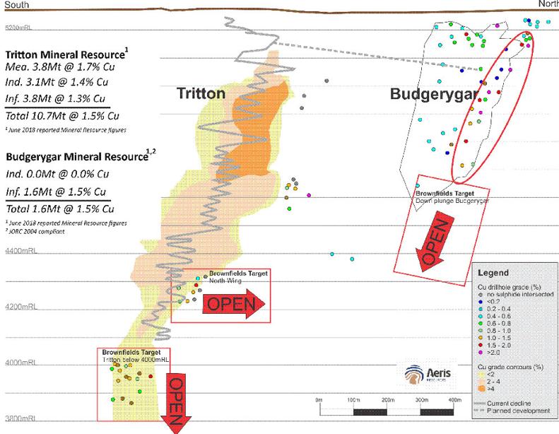 Tritton – Budgerygar Corridor